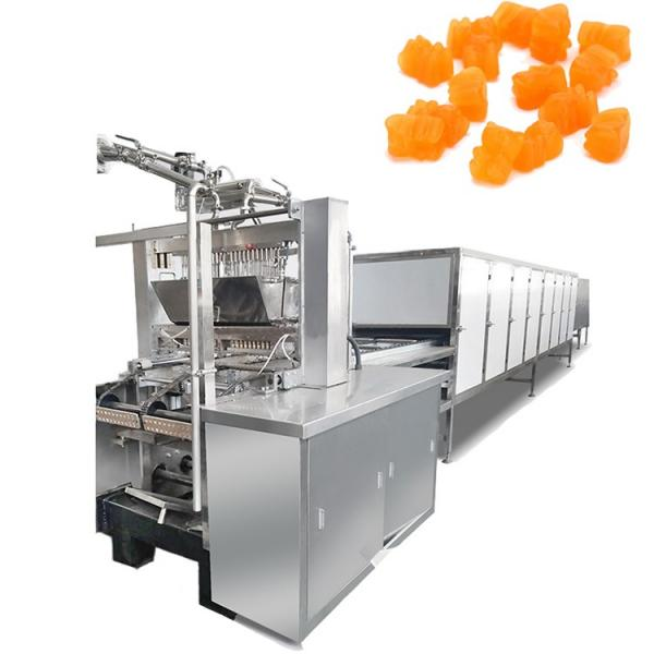 60 kg per hour small gummy bear candy maker for sale #2 image